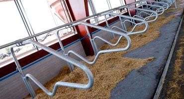 Технология изготовления оборудования для животноводческих ферм